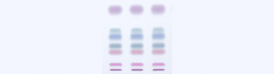 TLC (Thin Layer Chromatography)